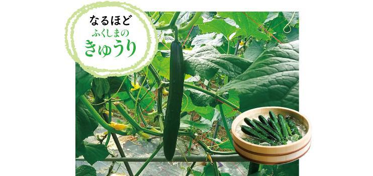 0704fukushima_e.jpg