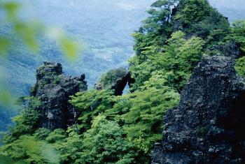 0404fukushima_b.jpg