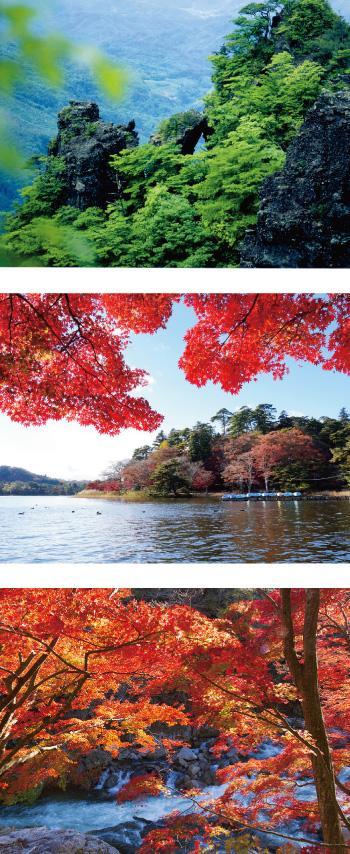 1003fukushima_b.jpg
