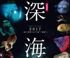 特別展「深海2017 〜最深研究でせまる