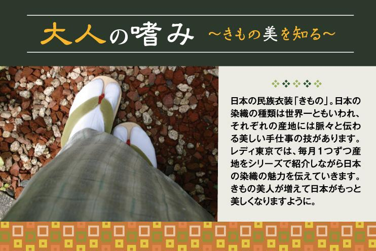 大人の嗜み 〜きもの美を知る〜